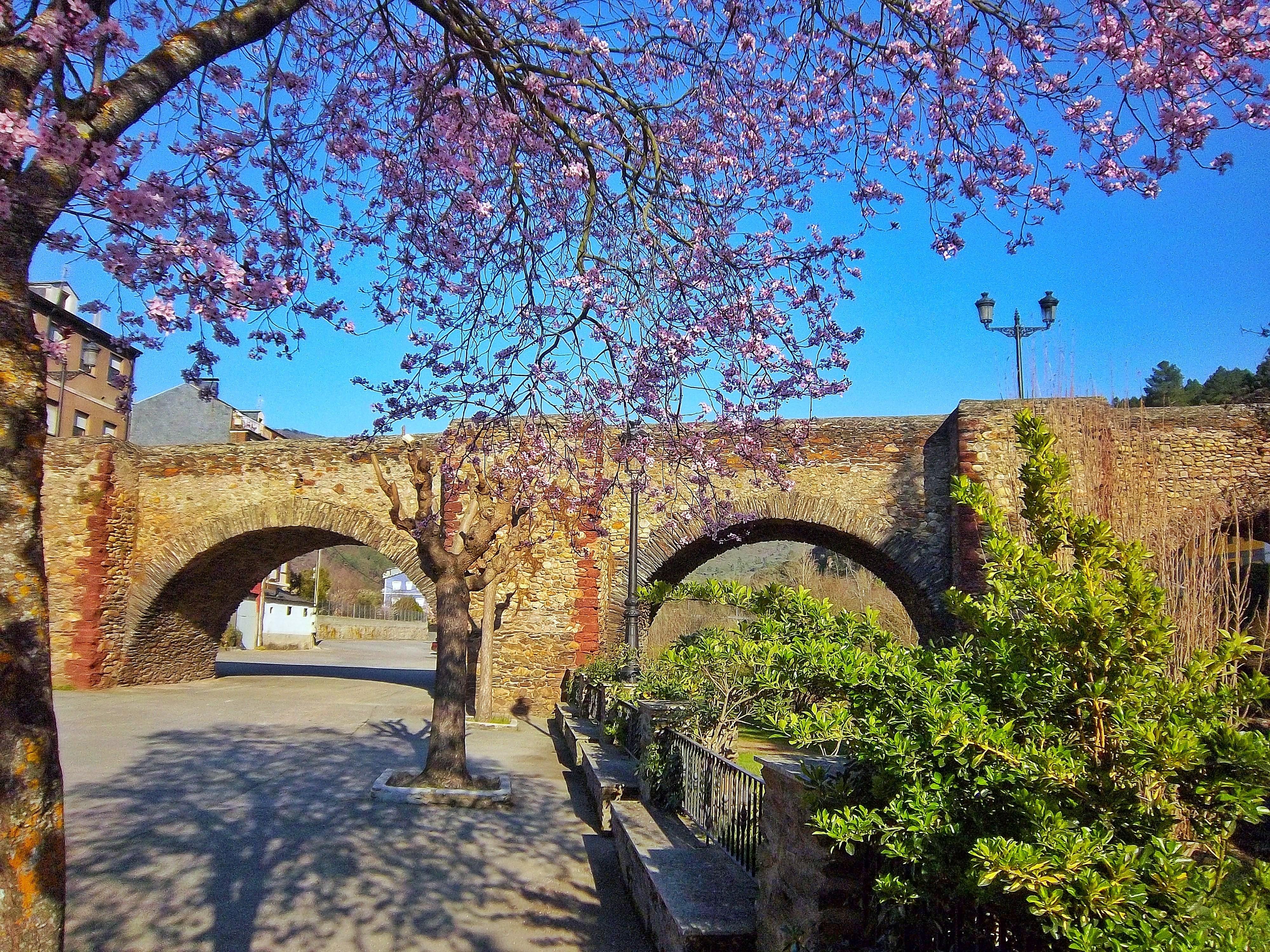 3º Premio. Primavera e ponte medieval sobre el río Sil en Sobradelo (Carballeda de Valdeorras)
