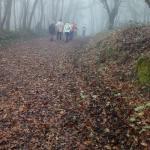 Actualización  de  las medidas sanitarias por el COVID que afectan a  los peregrinos por Galicia